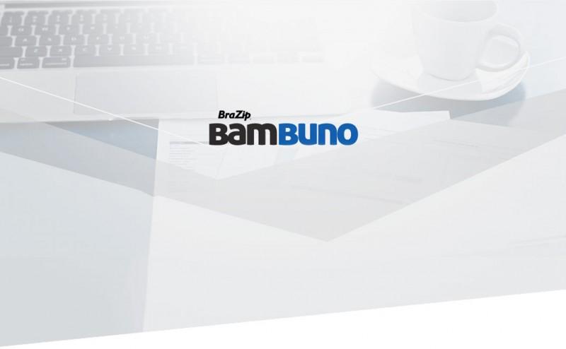 Bambuno - Software de Gestão Financeira Online